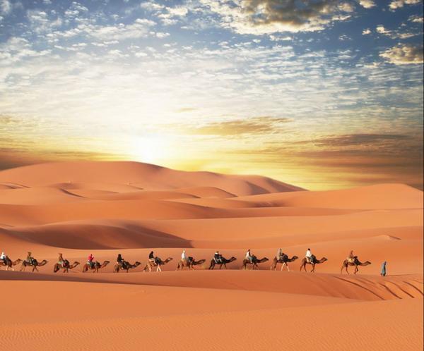 天边的骆驼曲谱 青藏高原歌曲曲谱图片